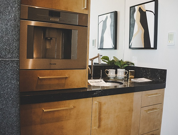 2019 New American Home Master-Schlafzimmer Mini Wet Bar