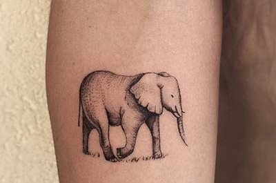 21 Cool und kreativ Elefant Tattoo Ideen